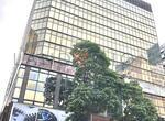 尖沙咀东 New Mandarin Plaza Block A - 17